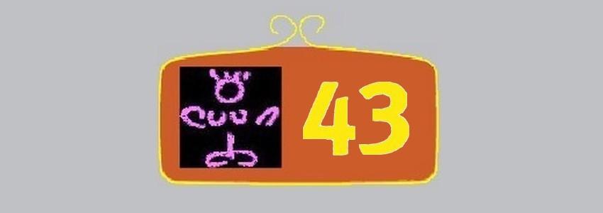 Pointure 43